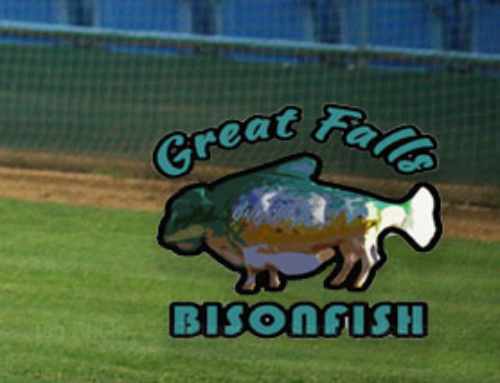 (Canceled) 2020 Bisonfish Game